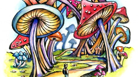 Mushroom Forest Storybook Watercolor Illustration