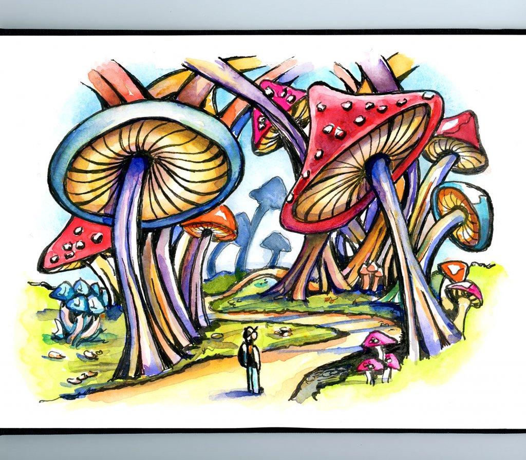 Mushroom Forest Storybook Watercolor Illustration Sketchbook Detail