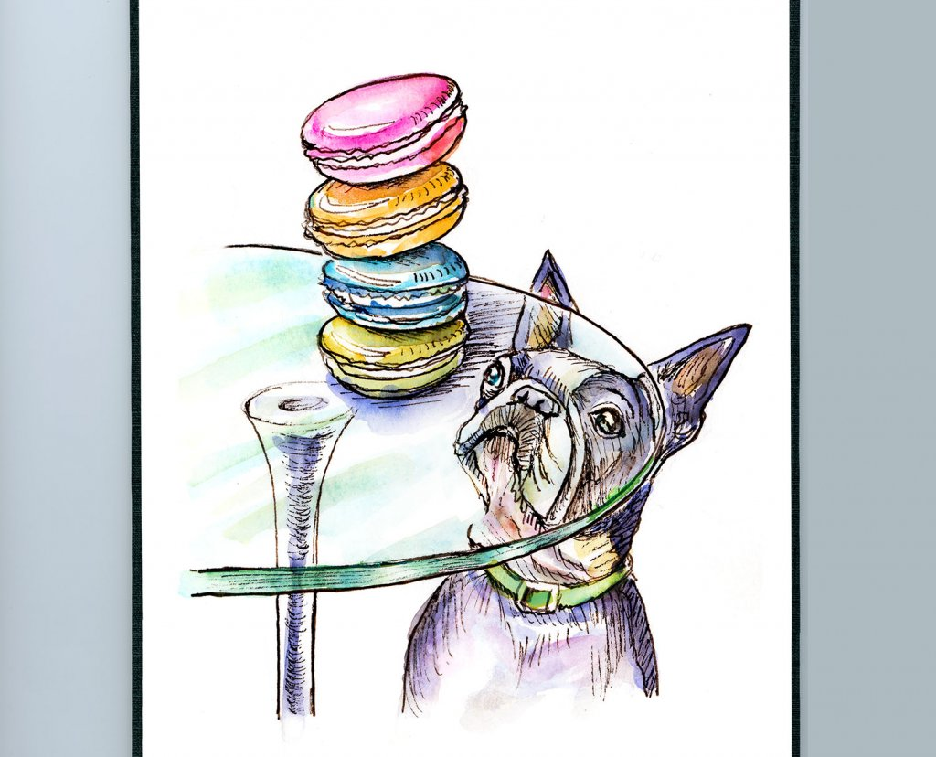 French Bulldog Macarons Watercolor Illustration Sketchbook Detail