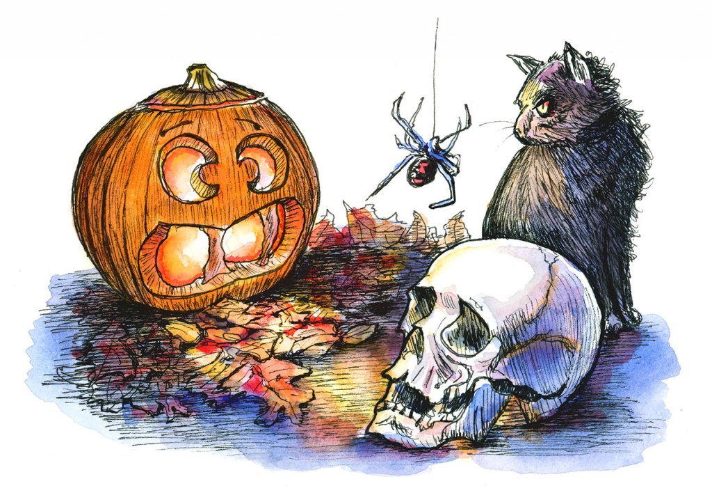 Halloween Pumpkin Skull Cat Spider Watercolor Illustration