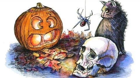 Halloween Pumpkin Skull Cat Spider Watercolor Illustration