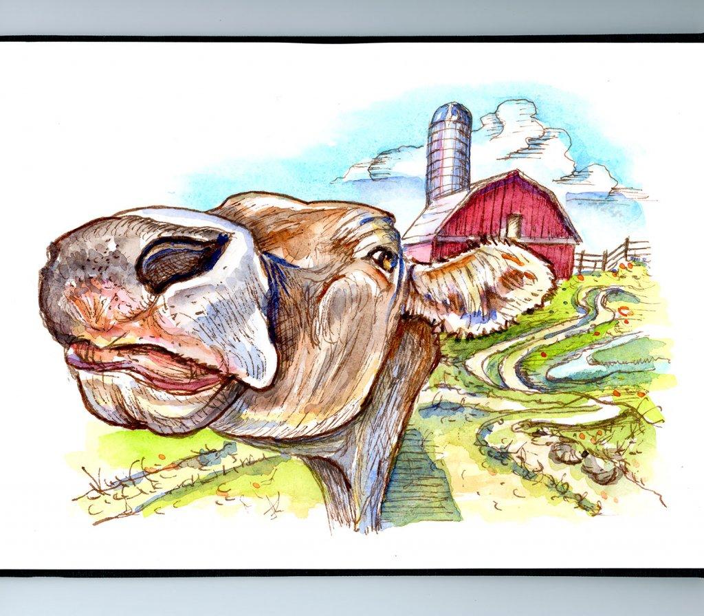 Cow Face Barn Farm Inktober Watercolor 2019 Sketchbook Detail