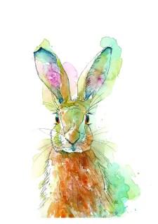Hare Watercolor Painting by Valerie de Rozarieux
