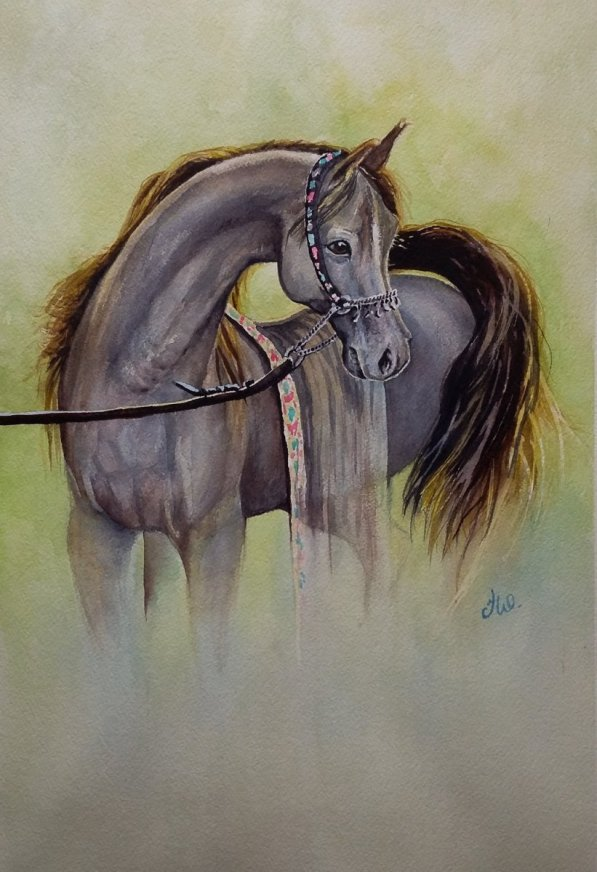 Horse Watercolor by Teresa Whyman Tesartmania