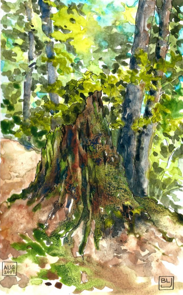 Mossy Stump watercolor sketch art journal