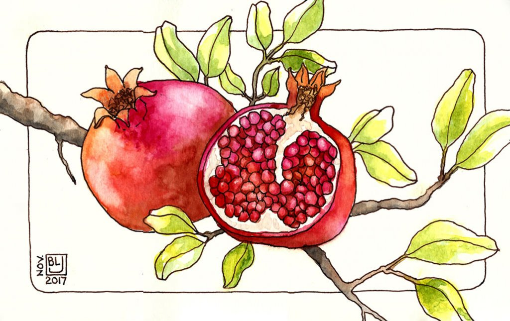 Pomegranate Watercolor Sketching Art Journal