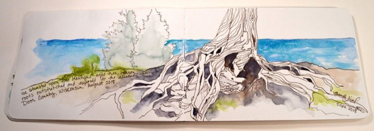 Resilience Watercolor Sketch of old tree roots