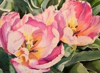 Sunlit Tulips - Watercolor Painting by Brenda Jiral