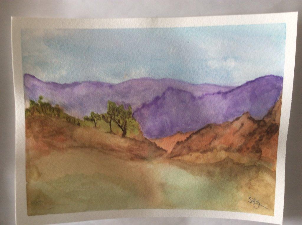 practice landscape