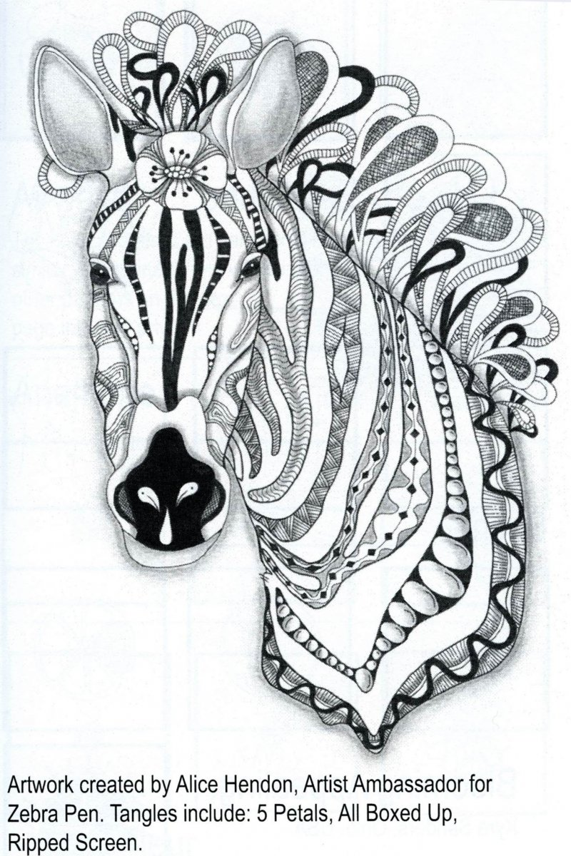 Zebra Illustration by Alice Hendon Tangle All Around review