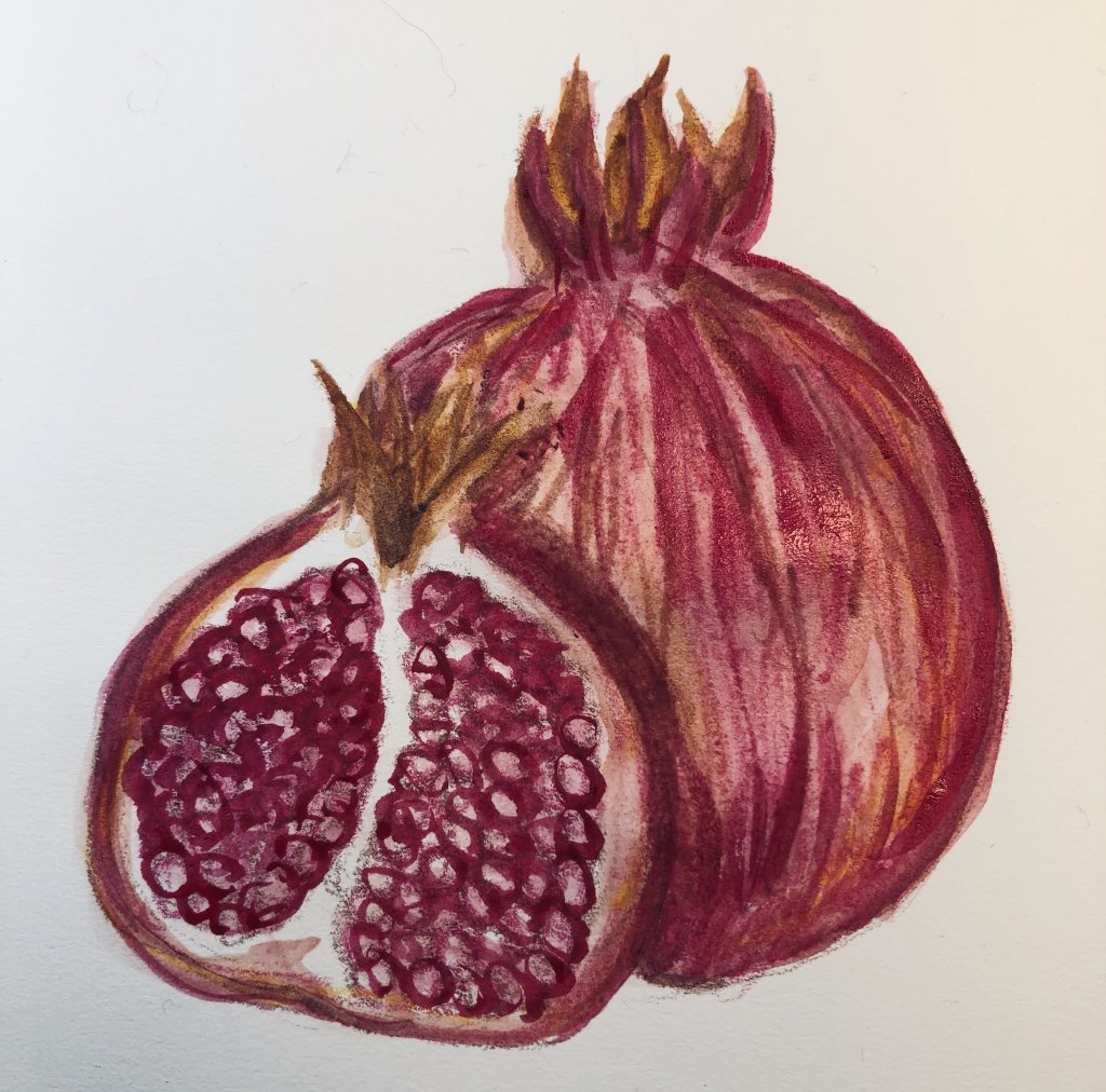 #doodlwashNovember2019 #doodlewashNovember2019FunThingstoDraw Day 17: Pomegranate 1036FA1F-4644-43EC