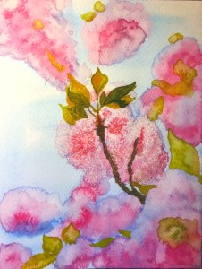 Cold and wet where I am today. Nice to remember the loveliness of spring cherry blossom. 8D9ADD31-6D