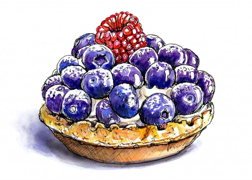 Fruit Tart Bluberries Raspberries Watercolor Illustration