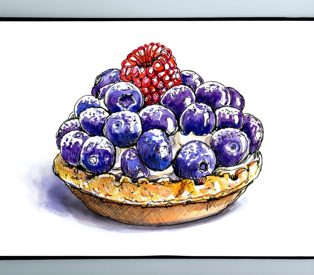 Fruit Tart Bluberries Raspberries Watercolor Illustration Sketchbook Detail