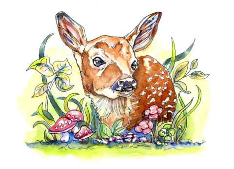 White Tailed Fawn Baby Deer Watercolor Illustration