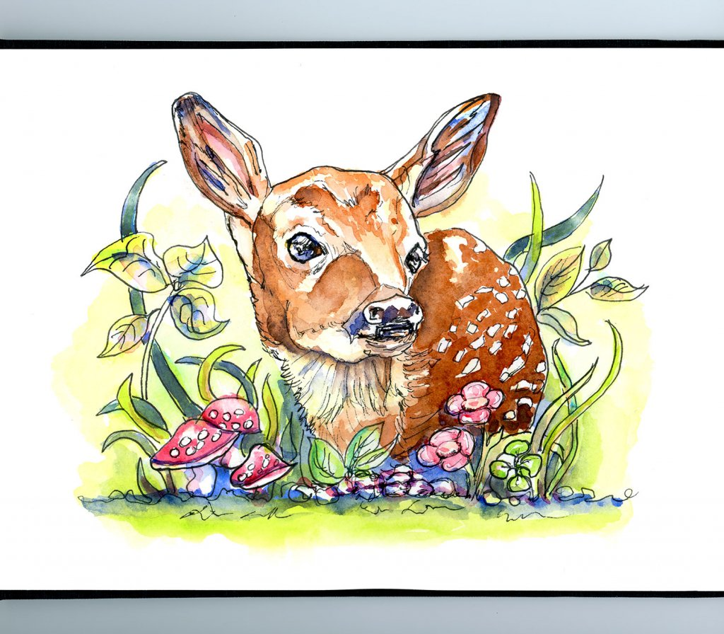White Tailed Fawn Baby Deer Watercolor Illustration Sketchbook Detail