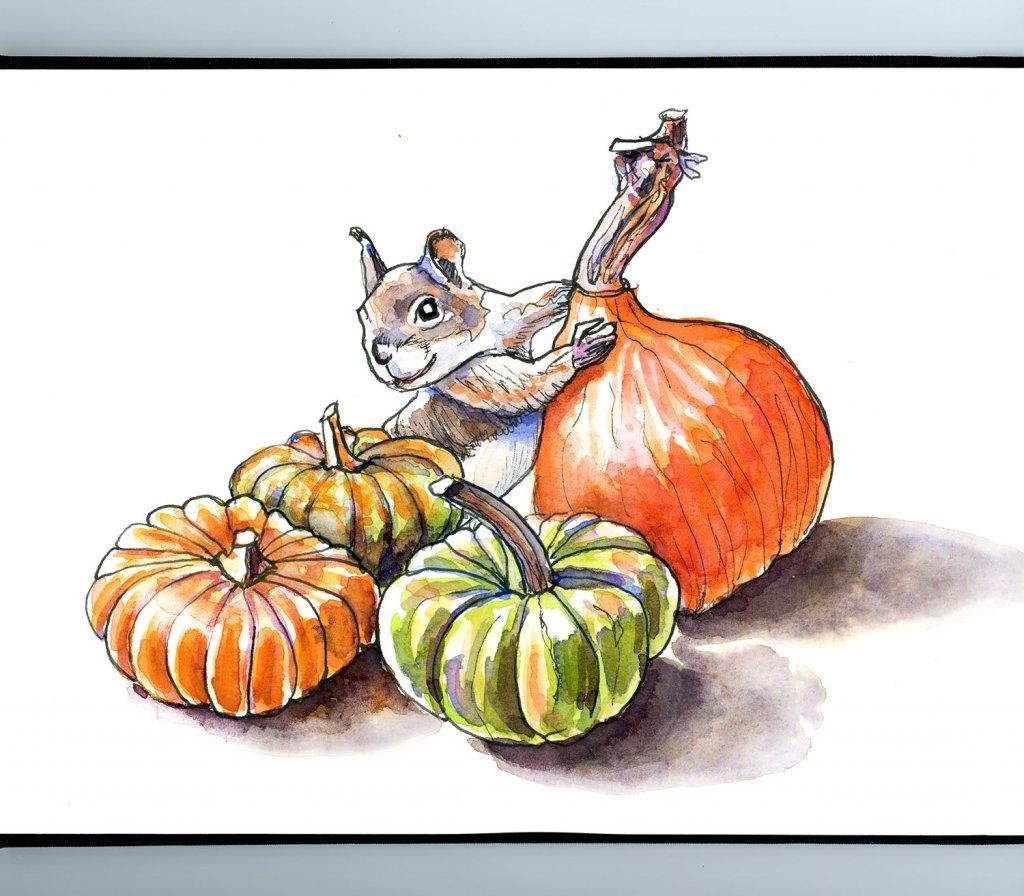 Ornamental Gourds Pumpkins Squirrel Watercolor Illustration Sketchbook Detail