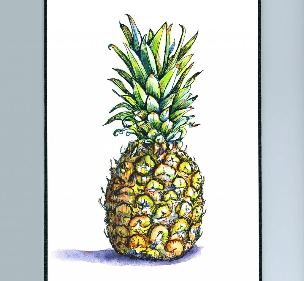 Pineapple Watercolor Illustration Sketchbook Detail