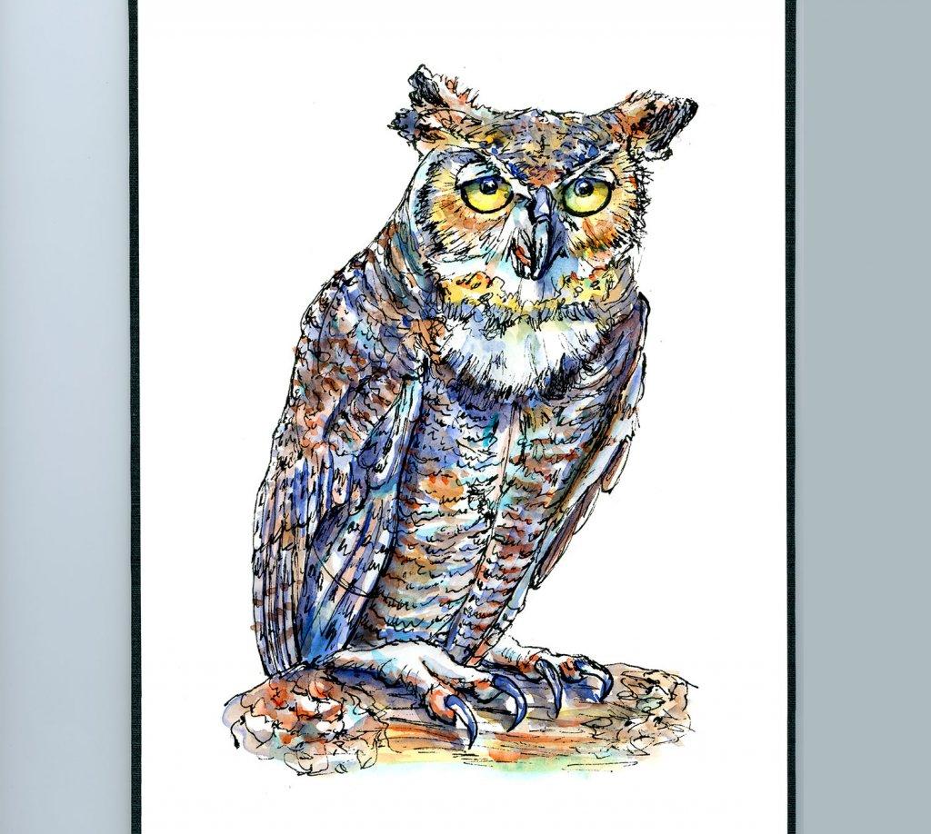Owl Eyes Watercolor Illustration Sketchbook Detail