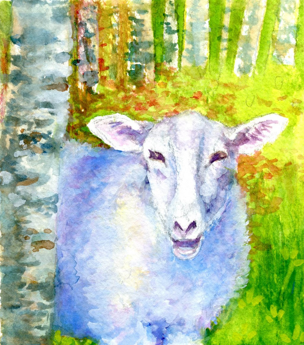 Watercolor painting of sheep in forest