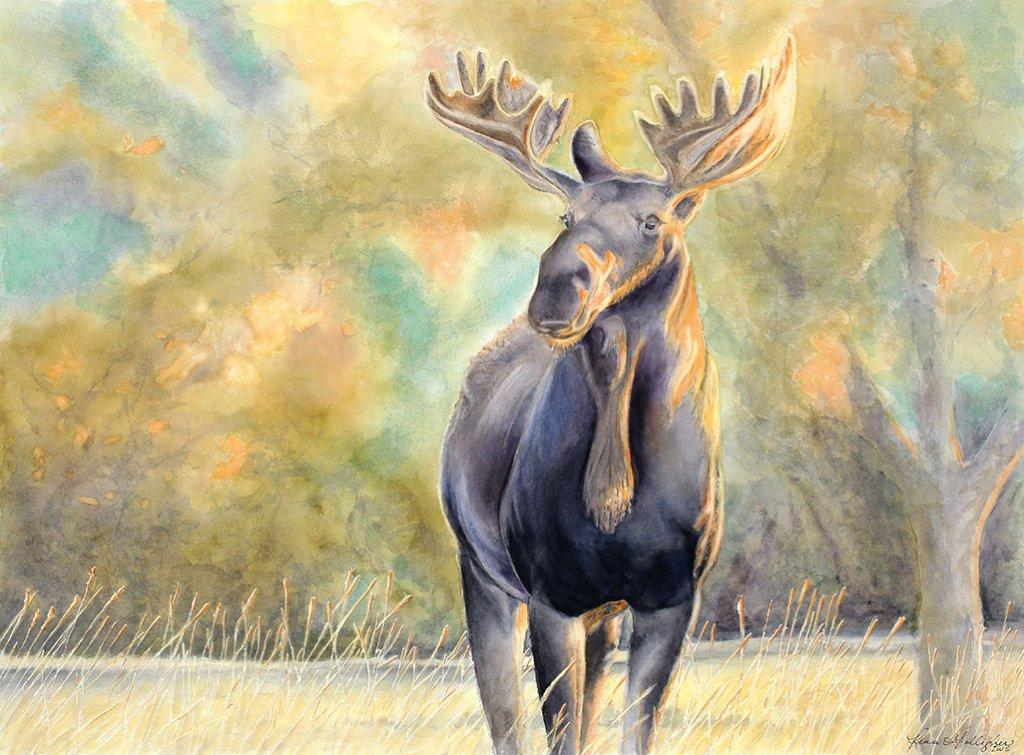 Moose Watercolor Painting by Renee Galligher