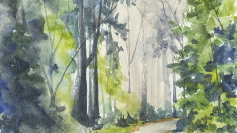 forest path watercolor painting by Lori Nass