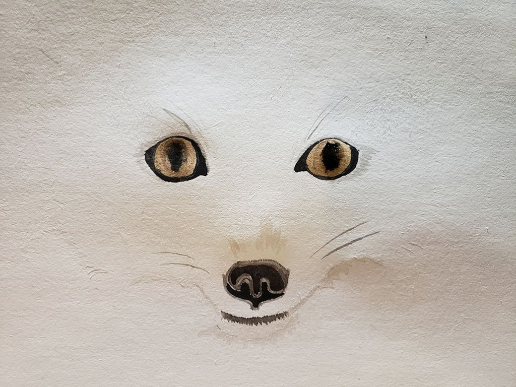 Arctic Fox Face Watercolor
