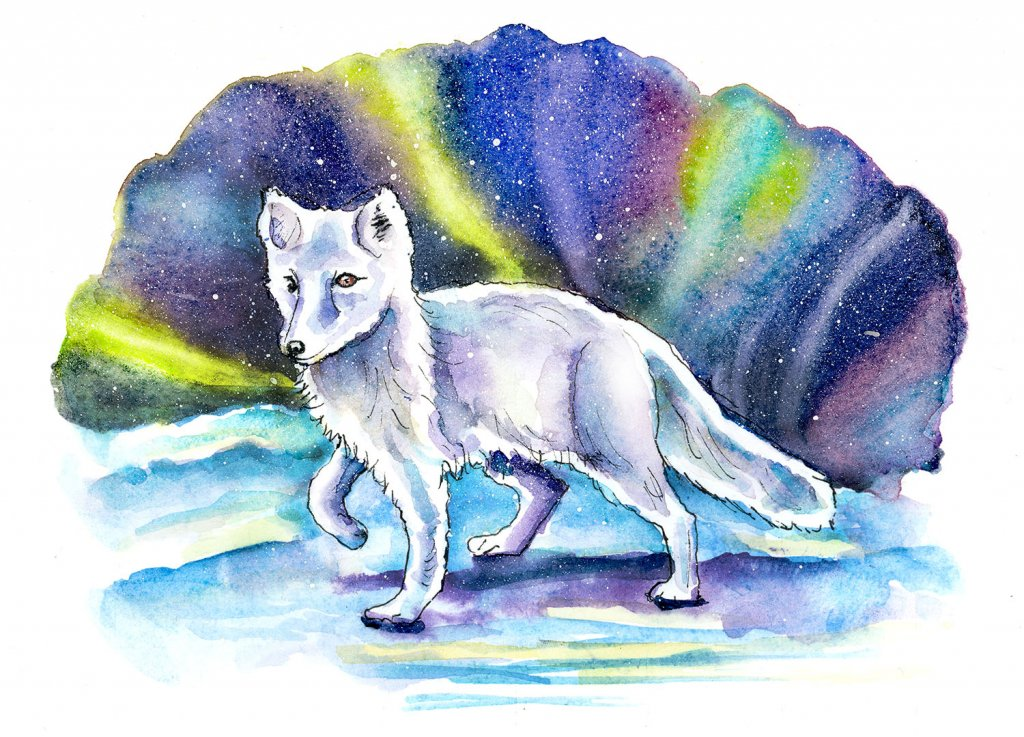 Arctic Fox Northern Lights Watercolor Painting