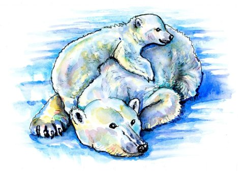 Baby Polar Bear And Mother Watercolor Painting