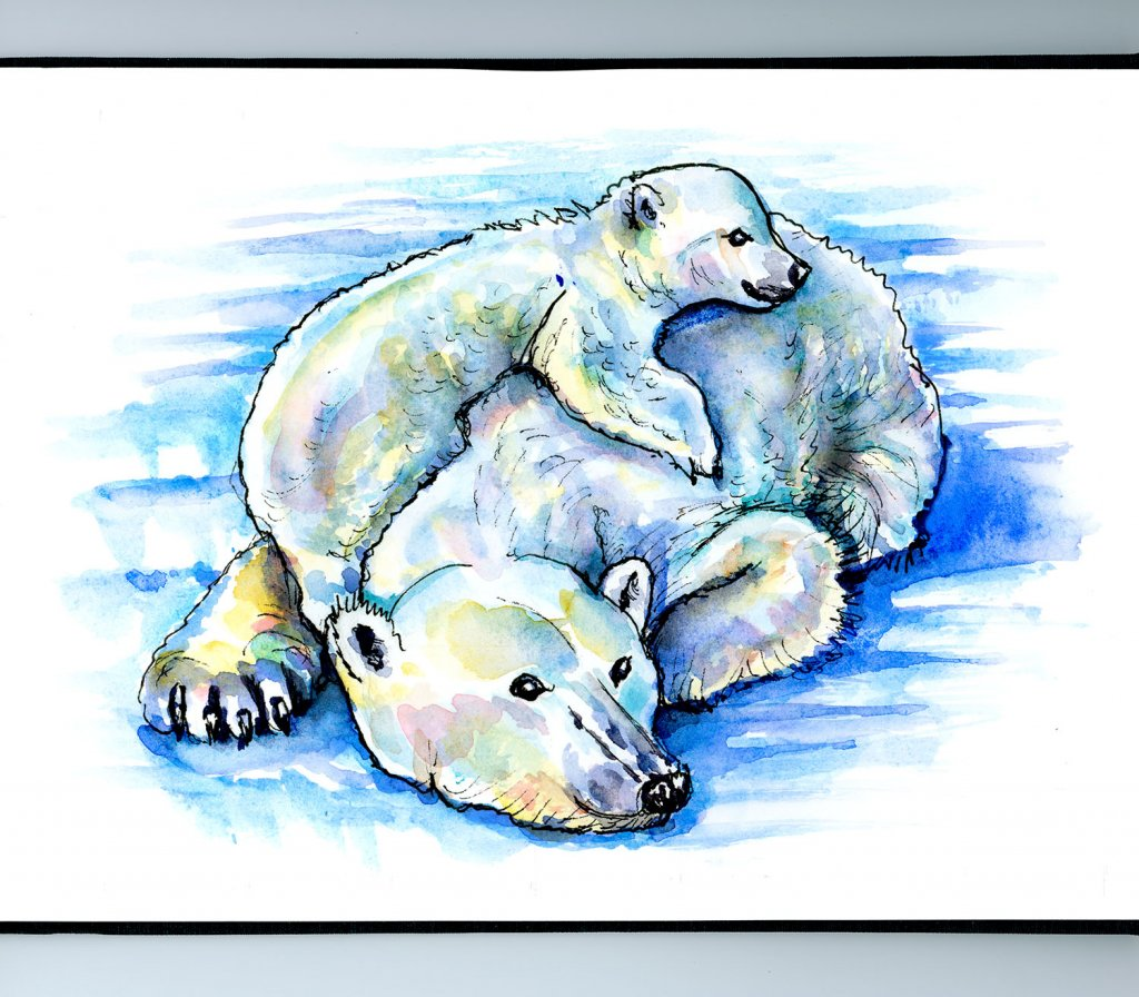 Baby Polar Bear And Mother Watercolor Painting Sketchbook Detail
