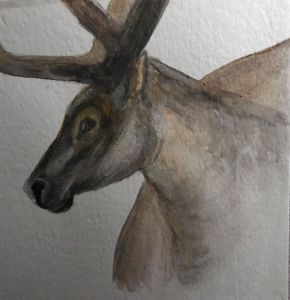 Dec. 26 watercolor (day 22 Reindeer) Behind and trying to catch up! I still have today's to fi