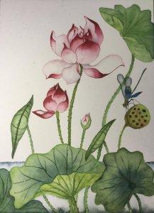 Stylised lotus A4FB1BAA-7A75-46A1-A2FD-9448AD93F7D5