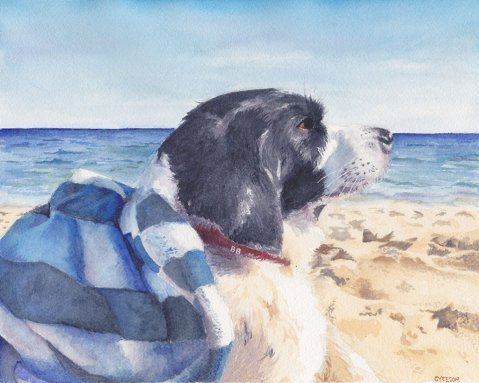 Christina Yee watercolor artist pet portrait dog barley-beerman painting