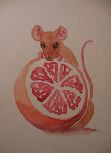 For the 4th prompt of January (Grapefruit). DSCN6347s
