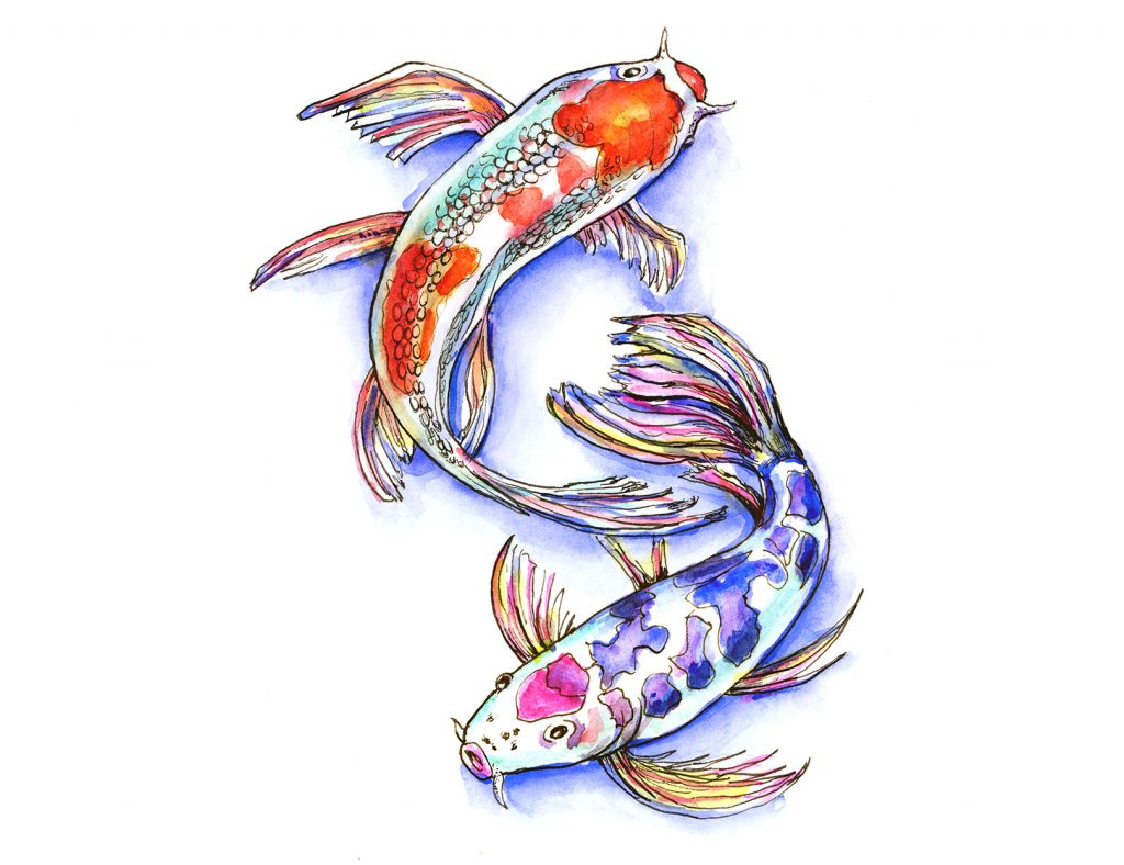 Two Koi Fish Watercolor Illustration