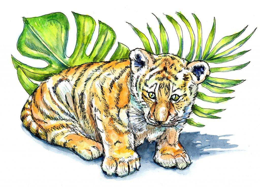 Tiger Cub Baby Watercolor Illustration