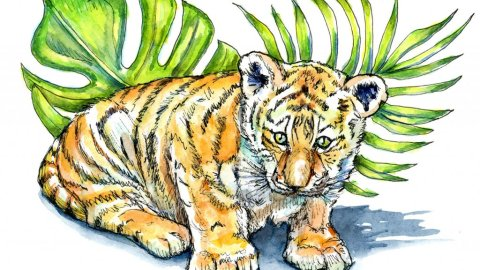 Tiger Cub Baby Watercolor Illustration