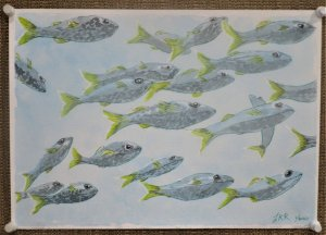 Fun with Fish. I couldn't resist those lovely yellow tails – just had to sketch them. Fu
