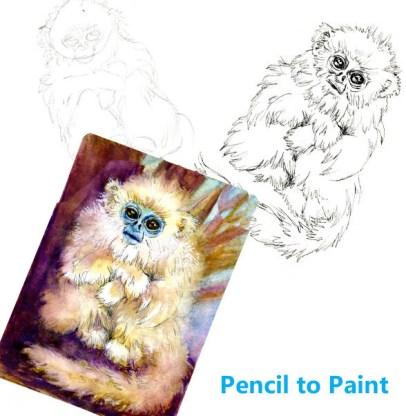Golden Snub-nose Monkey – #PencilToPaint Tutorial #PostcardsForTheLunchBag Zebra Zensations Te