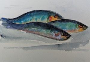 Fish 21/1/20 Watercolours on watercolour paper, pen fish watercolour