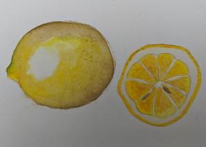 20/1/2020 – Lemons. Watercolour paper/watercolour paints lemons