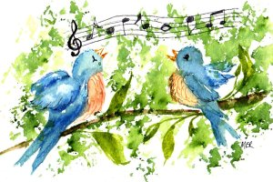 2/19/20 Music Songbirds in the morning…best music ever. 2.19.20 Music img005