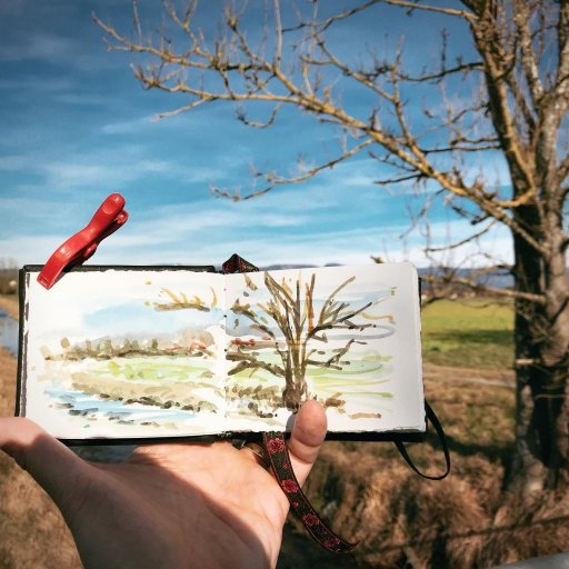 We had a few warm days, so I went out and took my little sketchbook made from scraps of a large proj