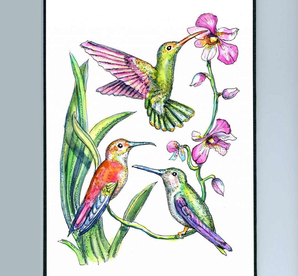 Hummingbirds Three Birds Watercolor Painting Sketchbook Detail