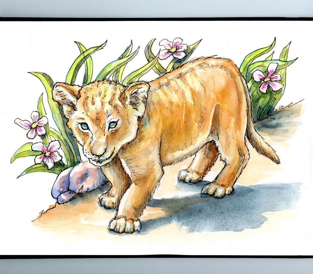 Lion Cub Grass And Flowers Watercolor Illustration Sketchbook Detail