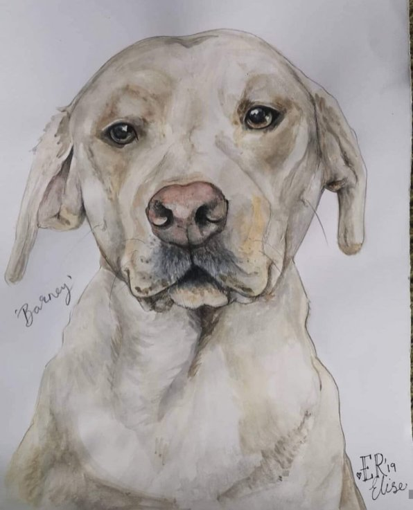 Dog Portrait by Elise Richards
