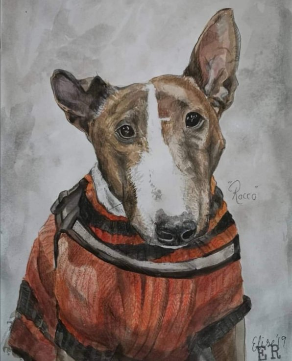 Dog Rocco Watercolor Painting Portrait