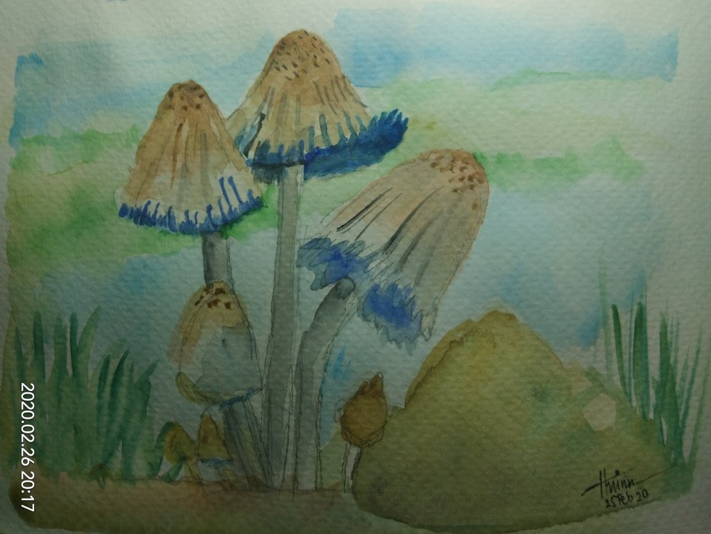 #doodlewashFebruary2020 #WorldWatercolorGroup #Beginner #21+22+24+25 #ocean #kitten #mushroom #swan