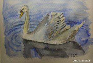 #doodlewashFebruary2020 #WorldWatercolorGroup #Beginner #21+22+24+25 #ocean #kitten #mushroom #swan