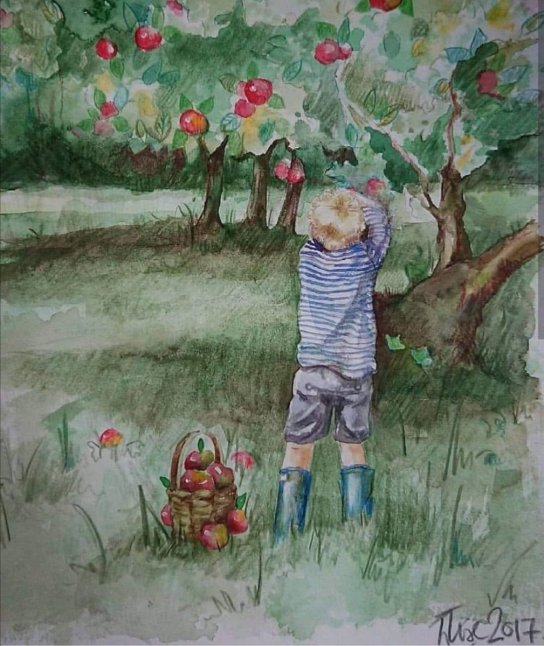 Little Boy Picking Apples Watercolor Painting
